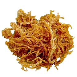 Buy Irish Moss (Sea Moss) BULK 5lb - Wild Harvested