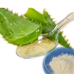 Aloe Vera Powder - 1 lb (Dried Powder, Organic)