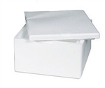 Insulated Container (MEDIUM SIZE) - Please see details for what this container can hold