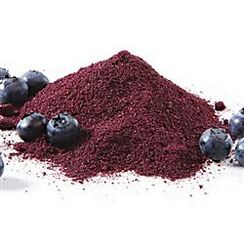Organic Blueberry Juice Powder - 4oz/113g -