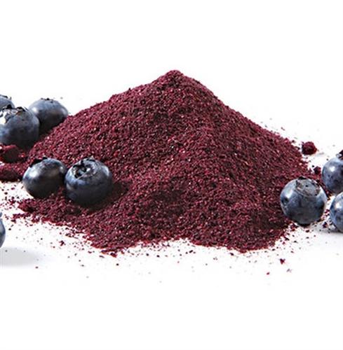 Buy Organic Real Blueberry Juice Powder 4oz 113g